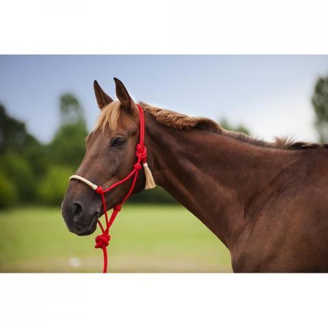 Kantar sznurkowy z uwiązem Ekkia Western czerwony
