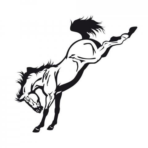 Naklejka York brykający koń czarny
