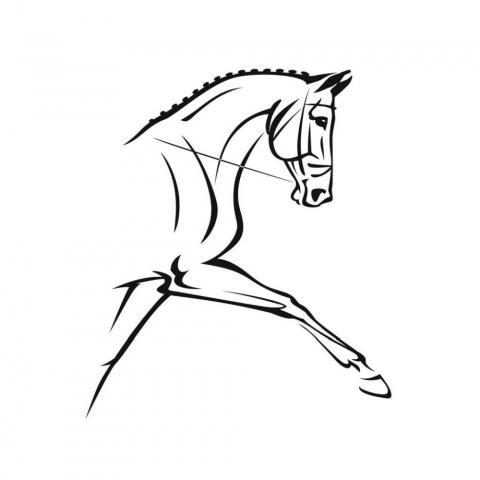 Naklejka York koń ujeżdżeniowy czarny
