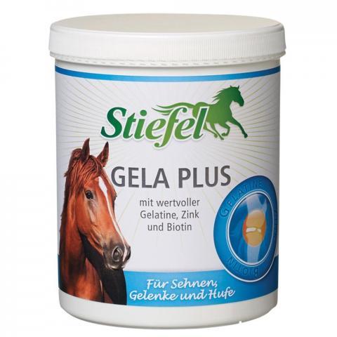Preparat na stawy i ścięgna Stiefel Gela-Plus proszek