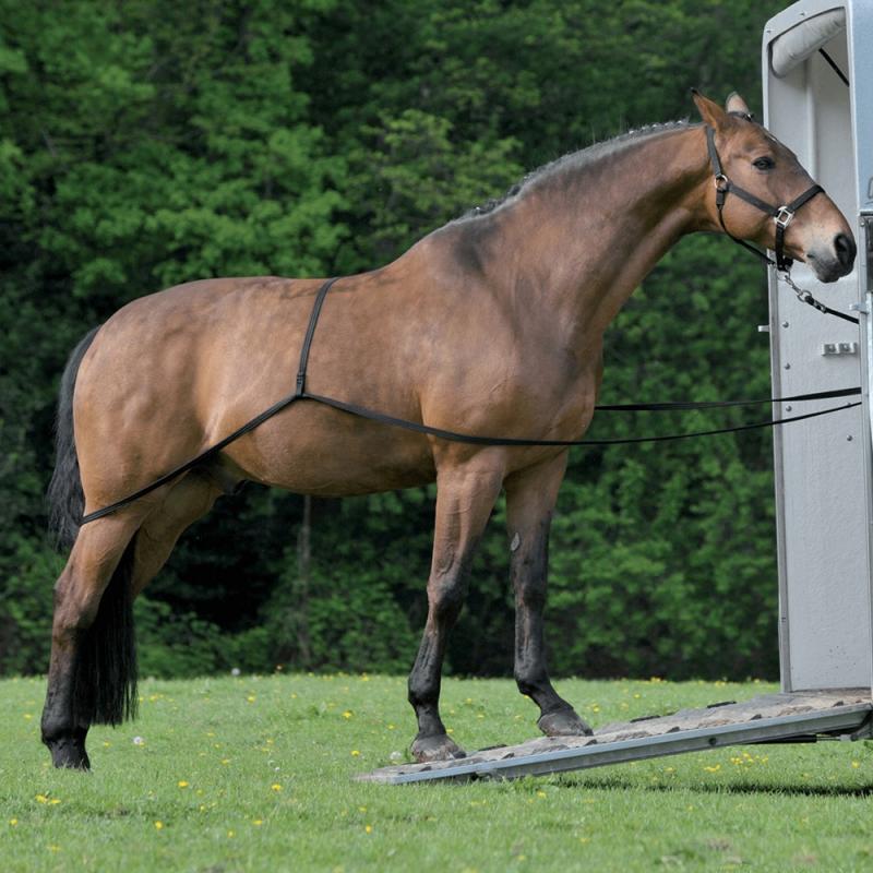 Uprząż do załadunku konia Waldhausen