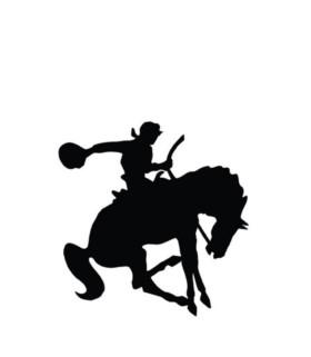 Naklejka Cowboy HKM czarna