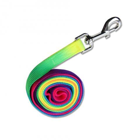Lonża Waldhausen Rainbow