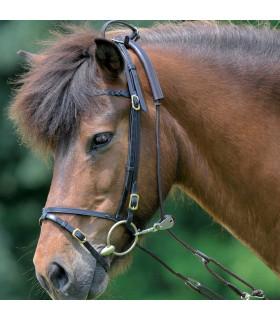 Combi Trainer - pomoc w treningu konia brązowy