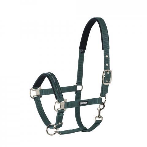 Kantar Eskadron Basics Pin Buckle racinggreen, zielony