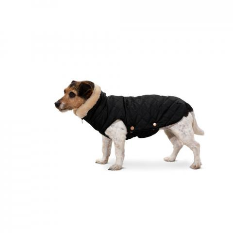 Derka dla psa Eskadron Heritage Glossy Quilted Black, czarna 2020/2021