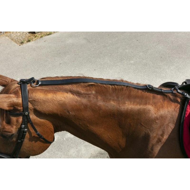 Pomoc zapobiegająca opuszczaniu łba przez konia Ekkia czarna