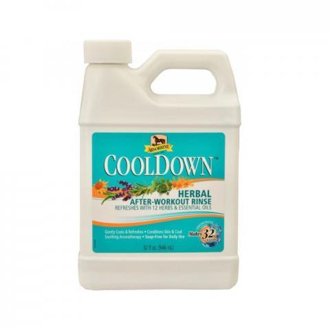 Chłodząca i łagodząca wcierka Absorbine CoolDown