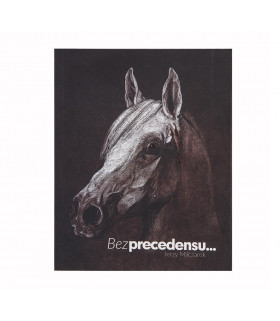Bez precedensu