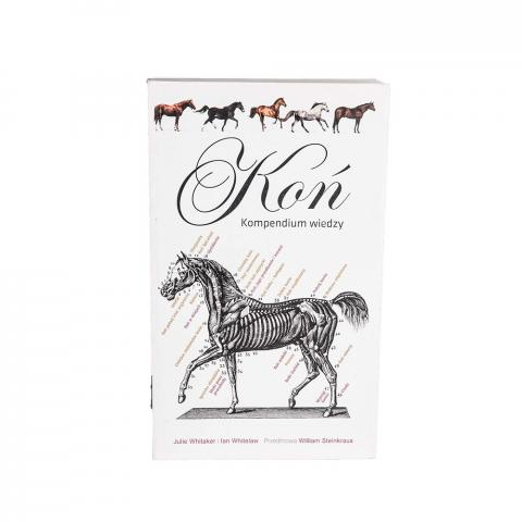 Koń - kompendium wiedzy