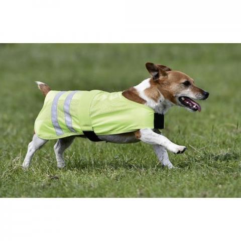 Derka-Kamizelka dla psa Busse REFLECTION żółta