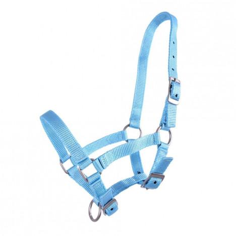 Kantar QHP collar foal niebieski